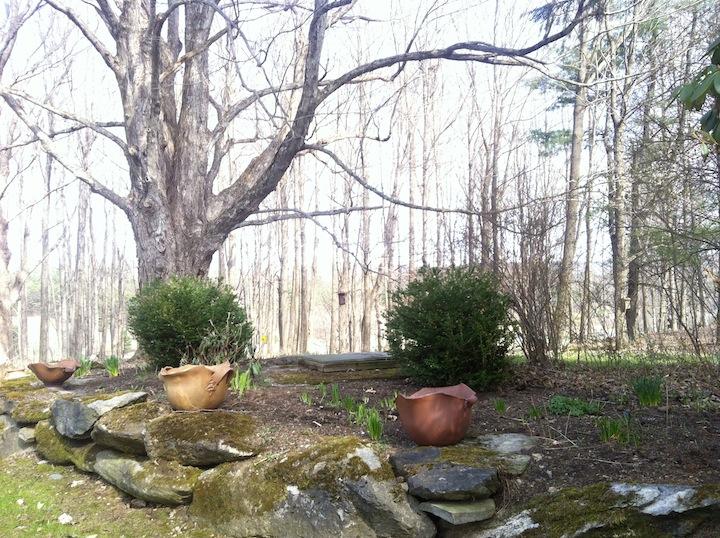 studio garden