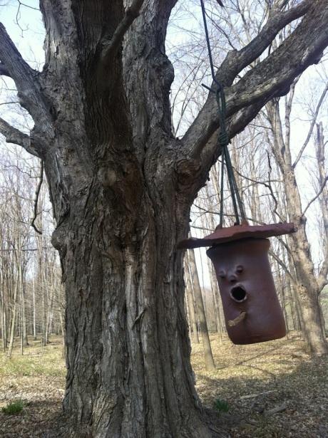 tree and birdhouse